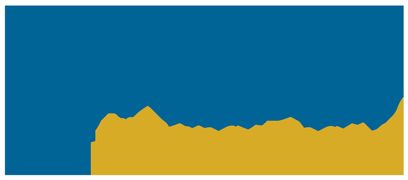 GOA by Sapna Anand